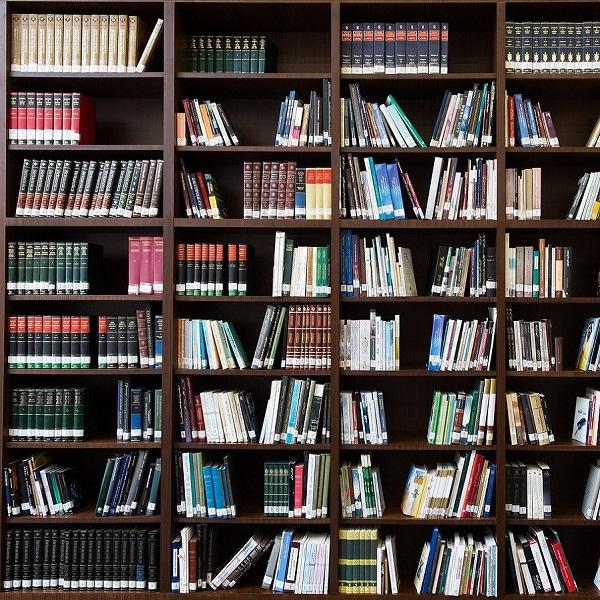 bibliothèques references h laymore artiste lyonnais